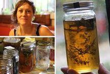Mellifera in the Media / Sometime folks write about Mellifera honey!