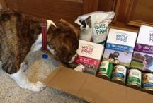 Whole Foods New Line of Dog and Cat Food!  #WholeFoodsPets / by Dogs N Pawz