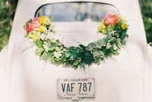 DIY Floral and Gardens / Our favorite DIY projects / by Freytag's Florist