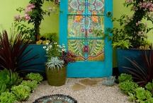 Backyard Beauties / by Sarah Hough