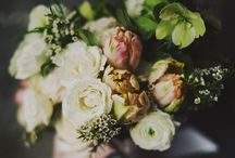BLOOMS & Bicycles  / by Dawneen Ball