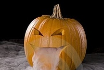HALLOWEEN / Halloween recipes, crafts, and decor.