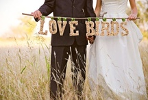 :: Wedding ::  / by Bonnie Rush {A Golden Afternoon}
