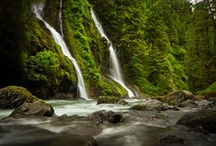 Washington State / by Susan Mead
