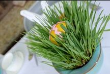 Easter & Spring Ideas / Easter Inspiration: recipes, crafts, Easter brunch, tablescapes, decorations, Easter eggs, kid crafts, art projects, activities, spring wreaths