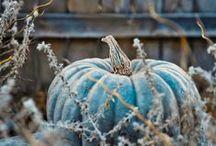 Autumn crafts / by Teresa....a seeker