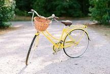 Color   Yellow / by Tosha Terpilowski