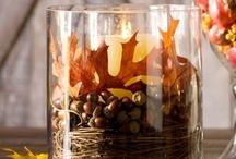 Fall / Autumn / by Kim Heckman