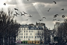 Paris / by The Food Author