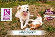 Arden Grange: What makes it Special / Find out what makes Arden Grange Naturally Hypoallergenic products so special for your pet's wellbeing and nutrition!