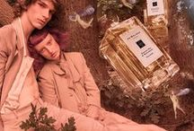 The English Oak / Surrender to the spell of The English Oak. Discover our captivating new scents. The inspiration behind the collection. And, how we brought the English forest to the Townhouse…