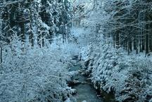 """Winter """"Zima"""""""