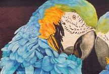 Bird Quilts / Birds of all kinds, plus beautiful feathers / by Quilt Inspiration