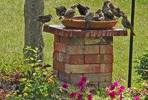Pomáhame zvieratkám / vtákom