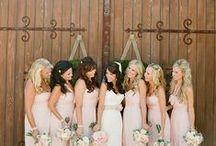 Sarah's Wedding / by Angela Hilbig