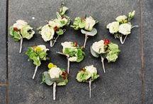 Jenny and Iain's Wedding @ Abbeywood / by Emma Fawcett-Eustace Flowers
