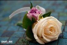 Hayley's wedding @ The Belle Epoque / by Emma Fawcett-Eustace Flowers