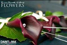 Heather's wedding @ Carden Park / by Emma Fawcett-Eustace Flowers