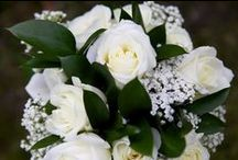 Sarah and Jonothan's wedding / by Emma Fawcett-Eustace Flowers