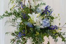 Rowena and Will's wedding / by Emma Fawcett-Eustace Flowers