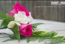 Jane and Neil's wedding / by Emma Fawcett-Eustace Flowers