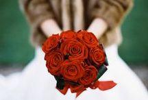 Whimsical Wonderland Weddings Photoshoot / flowers by Emma Fawcett-Eustace / by Emma Fawcett-Eustace Flowers