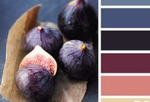 Color Schemes.  / by Kelsey Parker