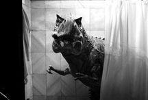 Dinosaur x Monster / by peterbucks