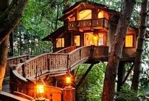 My favorite...tree houses