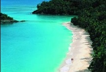 Someday, I'll Travel / by Kassie Bohannon
