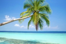 wanderlust...favorite beaches