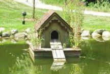 My favorite...Chicken coop, dog,cat houses / Chicken coops, dog, cat houses...