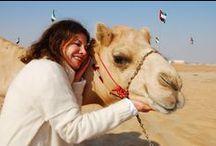 Wanderlust.... UAE / TRAVEL THROUGH THE UNITED ARAB EMIRATES