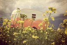 vintage campers / by Deneen Lotz