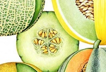 Melon is what we Love!