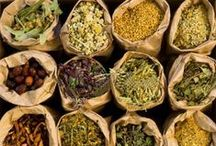 Herbs for Wellness