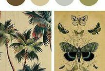 prints, colors & mood boards