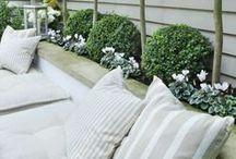 Green at Home&Garden