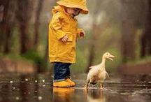 Dew&Raindrops