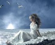 Enchanted Ocean