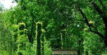 Castle&Villa Gardens