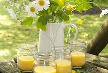 Yellow at Home&Garden