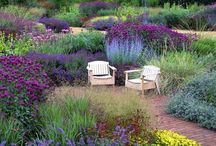 Designer gardens / Famous & influential gardens designed by well known designers / by Debby Tenquist