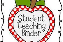 Teacher in Training  / Student teaching everything