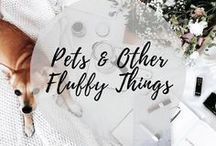 Pets & Other Fluffy Things