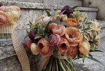 Champagne, Peaches and Coral Weddings