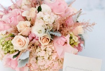 Champagne and Pinks Weddings