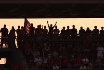 The Best Fans in Baseball