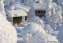 Winter / by Elaine Ronan