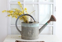 Garden ware / by Ingrid Be Visual